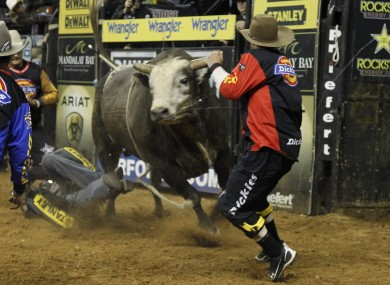 The bull, Deja Blu, bucks away from Cincinnati Bengal receiver Chad Ochocinco, center left, during the Professional Bull Riders' Lucas Oil Invitation bull riding event in Duluth, Georgia.