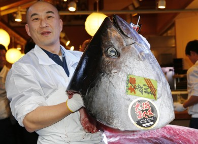 An employee of Kiyomura poses with the head of the giant tuna