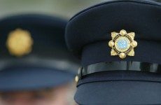"""The punishment must fit the crime"" – Garda anger at remission for killer"