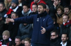 'I bleed Tottenham,' insists new boss Sherwood