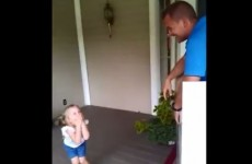 Little girl has no idea Dad is home from Afghanistan and hiding in a box